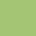 Puretech-051 Kiwi